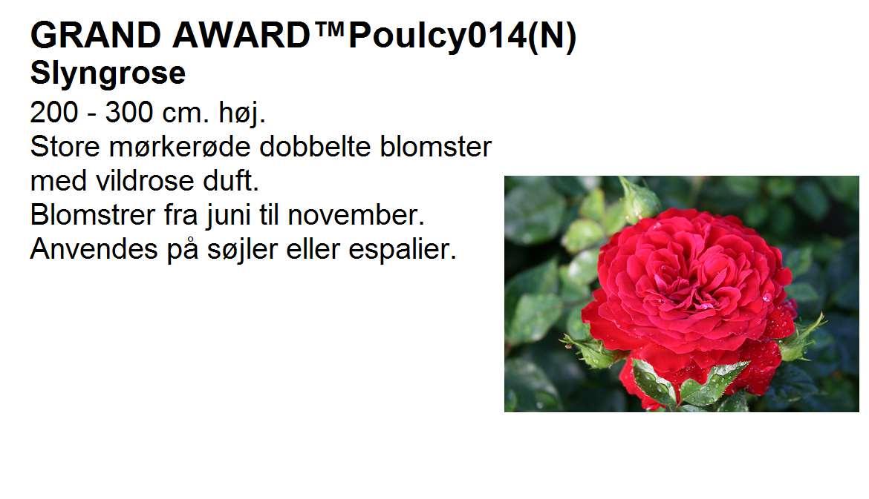 Grand Award