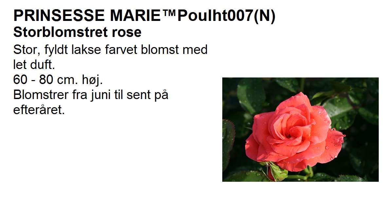 Prinsesse Marie