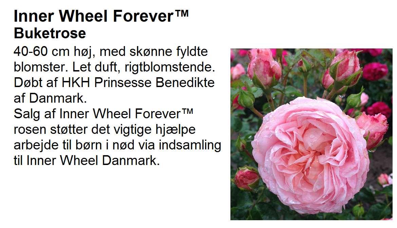 Inner Wheel Forever